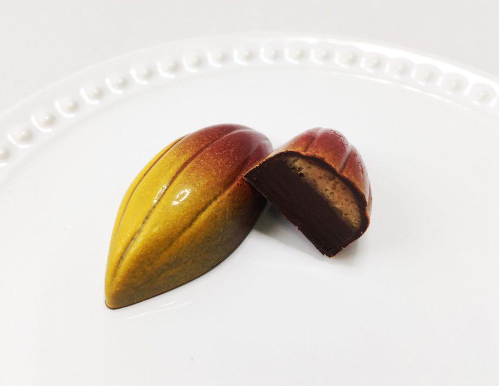 ボンボンショコラ テオニア タンザニアカカオ75% ヘーゼルナッツのプラリネ